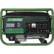 Бензиновый генератор Ставмаш БГ-3000