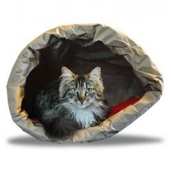 Как не купить кота в мешке